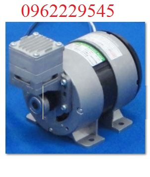 Mini oil-less Piston Pumps (10,12,15,20,25,30 RNS)